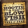 The Best of Hootie & The Blowfish (1993-2003) by Hootie & The Blowfish album reviews