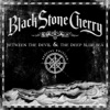 Between the Devil & the Deep Blue Sea (Special Edition) by Black Stone Cherry album reviews