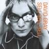Sell, Sell, Sell by David Gray album reviews