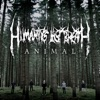 Stream & download Animal - Single