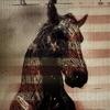 Stream & download Live Horses - EP