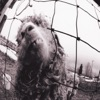 Vs. (Expanded Edition) by Pearl Jam album reviews