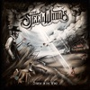 Straw in the Wind by The Steel Woods album reviews