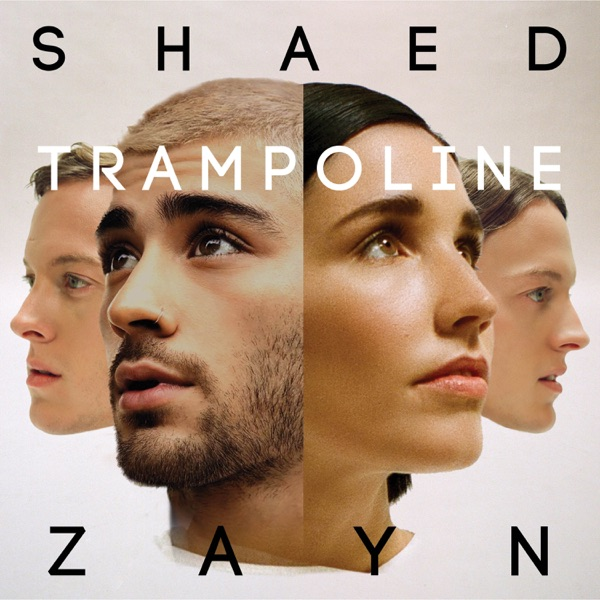 Trampoline by SHAED & ZAYN song reviws