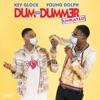Stream & download Dum and Dummer