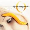 Thirteenth Step by A Perfect Circle album reviews