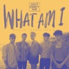 Stream & download What Am I (Martin Jensen Remix) - Single