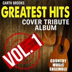 To Make You Feel My Love by Country Music Ensemble listen, download