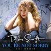 Stream & download You're Not Sorry (CSI Remix) - Single