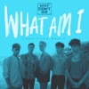Stream & download What Am I (Cash Cash Remix) - Single