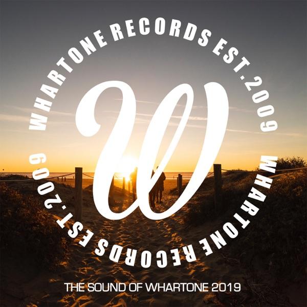 Watching Octavia (Luke Stanger Remix) by X-Press 2 & Sonny Wharton song reviws