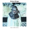 River (BURNS Remix) by Bishop Briggs music reviews, listen, download