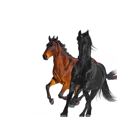 Old Town Road (feat. Billy Ray Cyrus) [Remix] - Single by Lil Nas X album reviews, ratings, credits