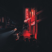 The Neon Skyline by Andy Shauf album reviews and download