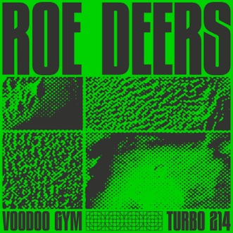 Voodoo Gym - EP by Roe Deers album reviews, ratings, credits