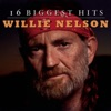 16 Biggest Hits: Willie Nelson by Willie Nelson album reviews