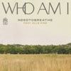 Stream & download Who Am I (feat. Elle King) - Single
