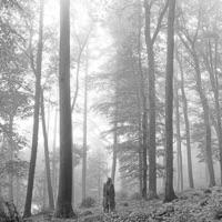 folklore album listen