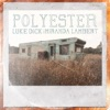 Stream & download Polyester (feat. Miranda Lambert) - Single