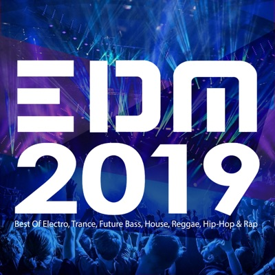 EDM 2019: Best of Electro, Trance, Future Bass, House, Reggae, Hip-Hop & Rap by Various Artists album reviews, ratings, credits