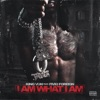 Stream & download I Am What I Am (feat. Fivio Foreign) - Single
