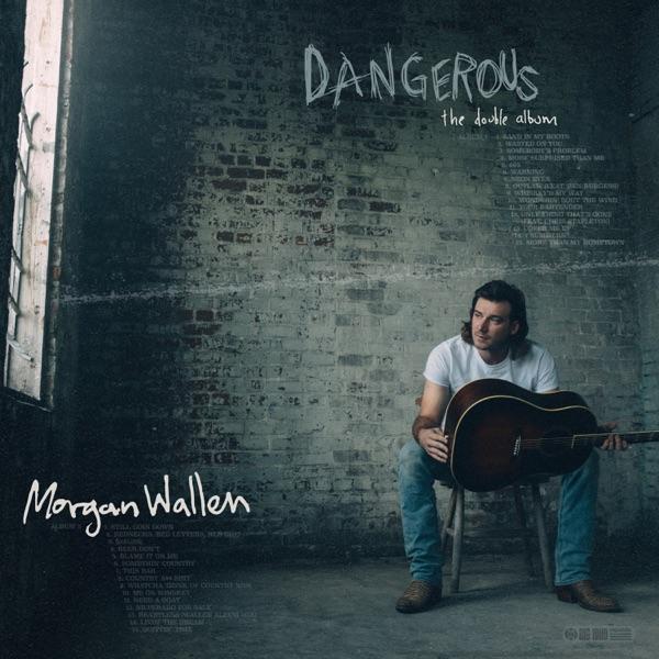Somebody's Problem by Morgan Wallen song reviws