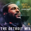 What's Going On: The Detroit Mix by Marvin Gaye album listen and reviews
