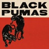 Black Pumas (Expanded Deluxe Edition) by Black Pumas album reviews