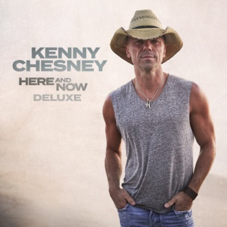 Knowing You by Kenny Chesney song reviws