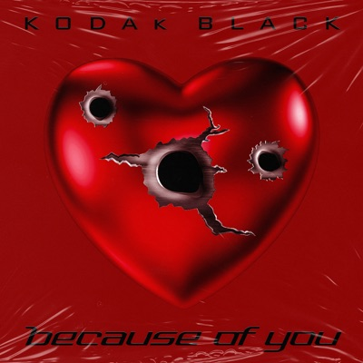 Because of You - Single by Kodak Black album reviews, ratings, credits