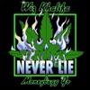 Stream & download Never Lie (feat. Moneybagg Yo) - Single