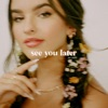 Stream & download See You Later (Ten Years) - Single