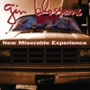 New Miserable Experience by Gin Blossoms album reviews