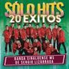Stream & download Sólo Hits (20 Éxitos)