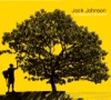 In Between Dreams (Bonus Track Version) by Jack Johnson album reviews