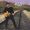 Greatest Hits by Bob Seger & The Silver Bullet Band album reviews