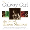 Stream & download The Galway Girl (feat. Steve Earle)