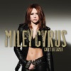 Stream & download Can't Be Tamed