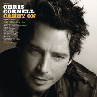 You Know My Name by Chris Cornell song reviws