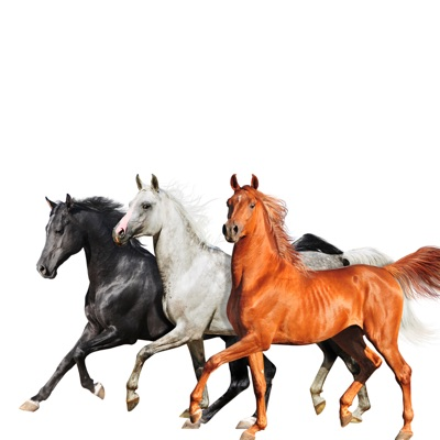 Old Town Road (Diplo Remix) - Single by Lil Nas X, Billy Ray Cyrus & Diplo album reviews, ratings, credits