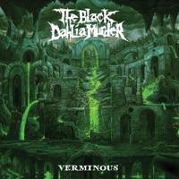 Verminous by The Black Dahlia Murder album ranks and download