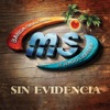 Stream & download Sin Evidencia - Single