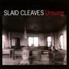 Unsung by Slaid Cleaves album reviews