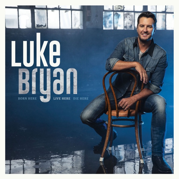 Down to One by Luke Bryan song reviws