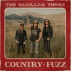 COUNTRY FUZZ album cover