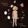 Oh Quiet World by David Berkeley album reviews