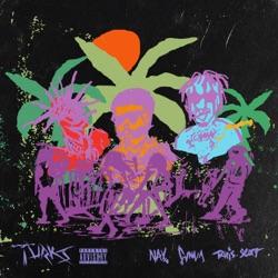 Turks (feat. Travis Scott) by NAV & Gunna reviews, listen, download