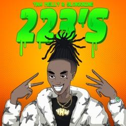 223's (feat. 9lokknine) by YNW Melly reviews, listen, download
