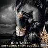 Stream & download Never Surrender (feat. Scarface, Jadakiss, Meek Mill, Akon, John Legend & Anthony Hamilton)