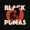 Black Pumas by Black Pumas album reviews